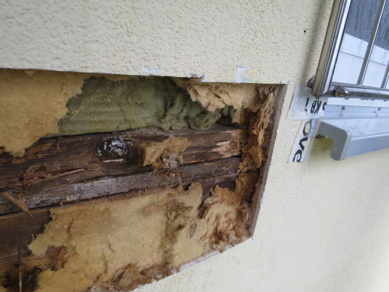 Schäden an Tragekonstruktion Bausubstanz