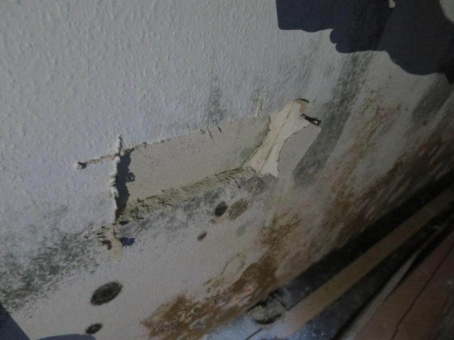 Durchfeuchtete und verschimmelte Gipskartonplatte an der Kelleraußenwand